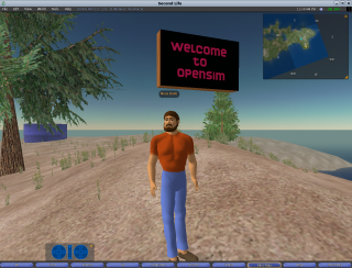 Opensim avatar.png
