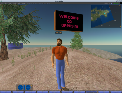 Opensim avatar small.png
